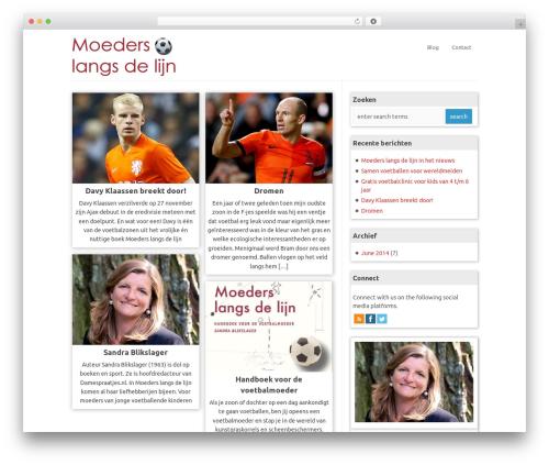 WP-PinUp WordPress website template - moederslangsdelijn.nl