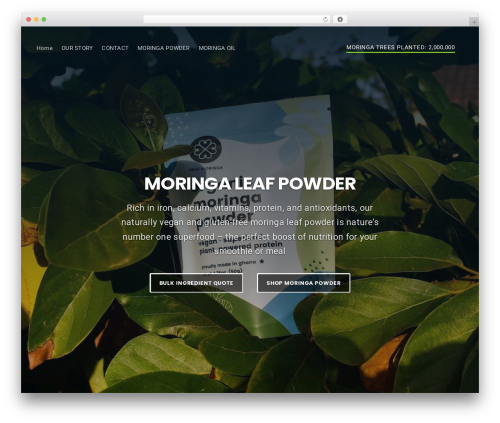 Businessx WordPress theme free download - moringaconnect.com