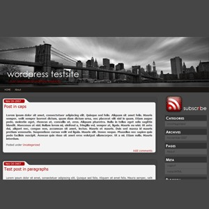 Best WordPress theme connexion