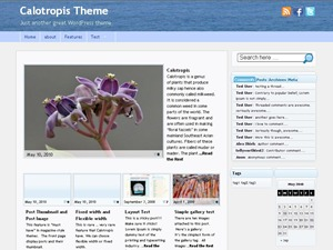 Calotropis WordPress news template