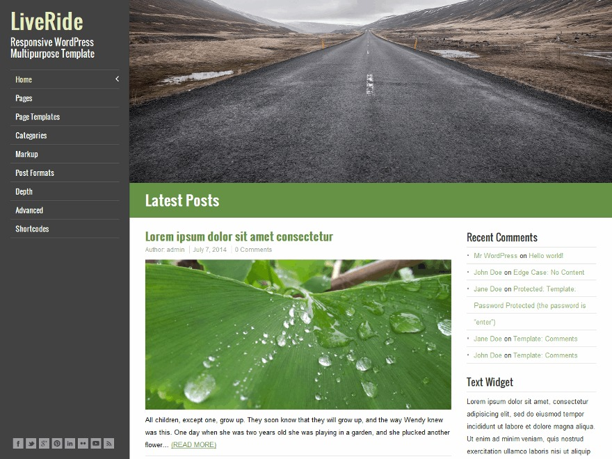 LiveRide Premium WordPress shopping theme