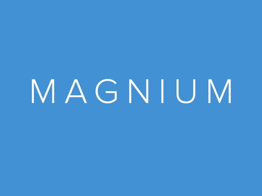 Magnium WordPress shop theme