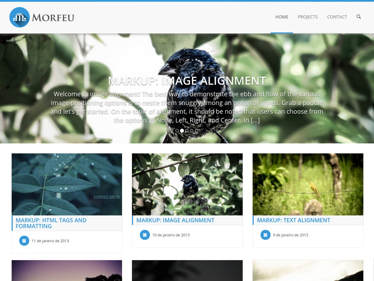 Morfeu free WordPress theme