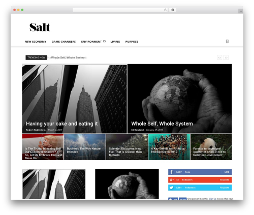 Newspaper WordPress news theme - wearesalt.org