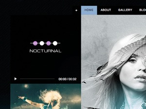 Nocturnal best WordPress theme