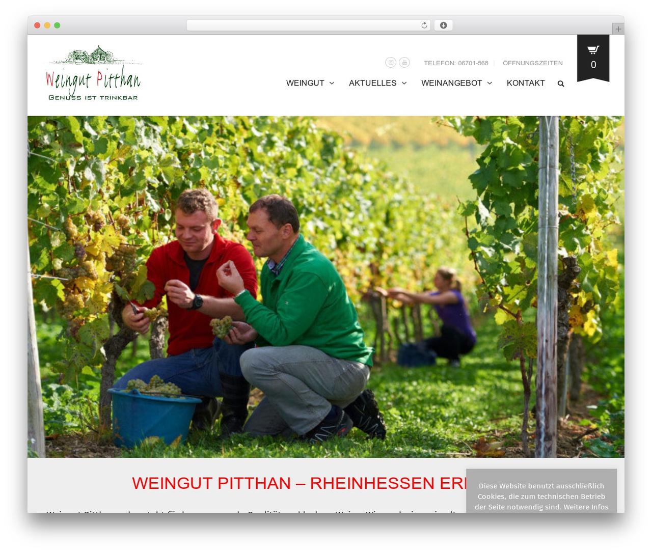 Oxygen free WordPress theme - weingut-pitthan.de