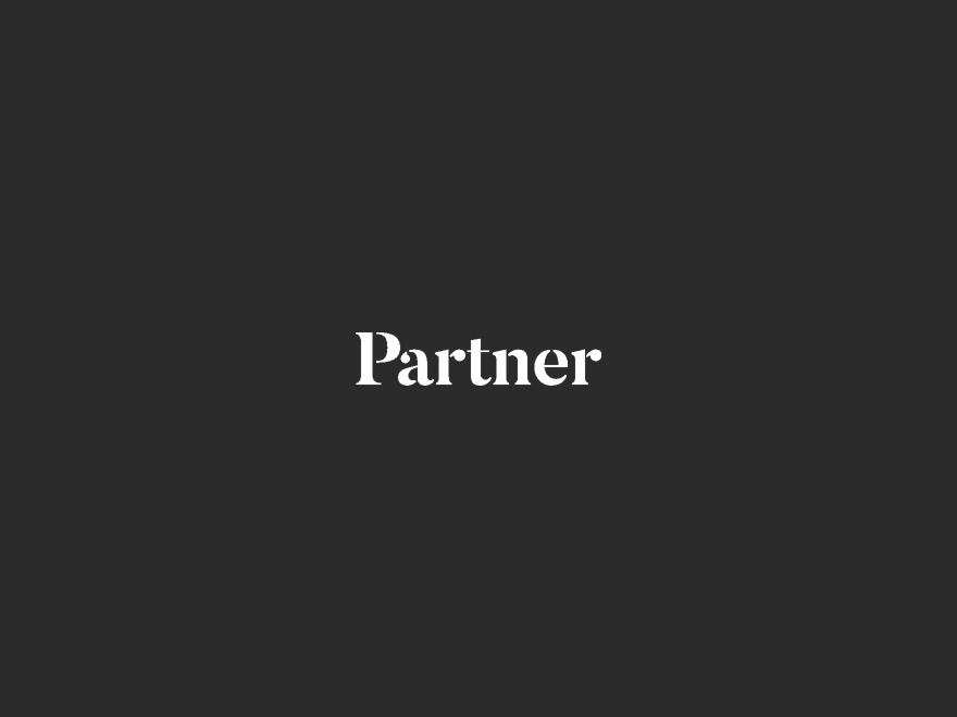 Partner WordPress theme