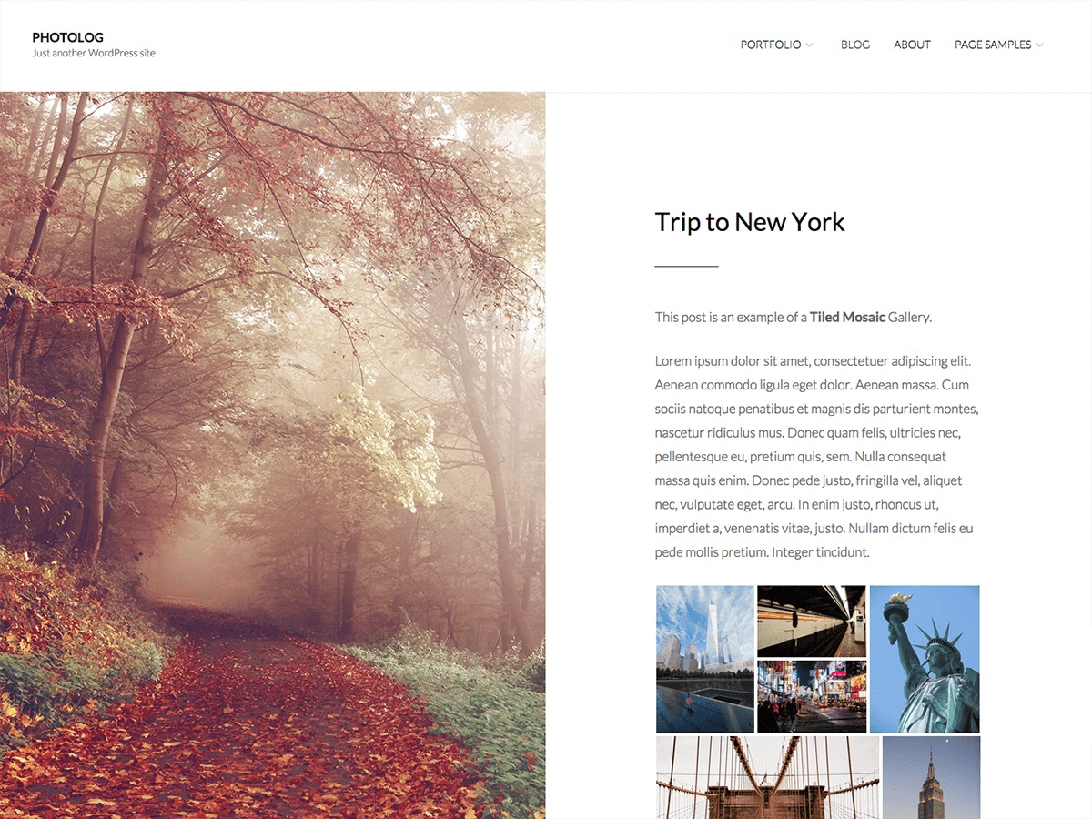 Photolog free website theme