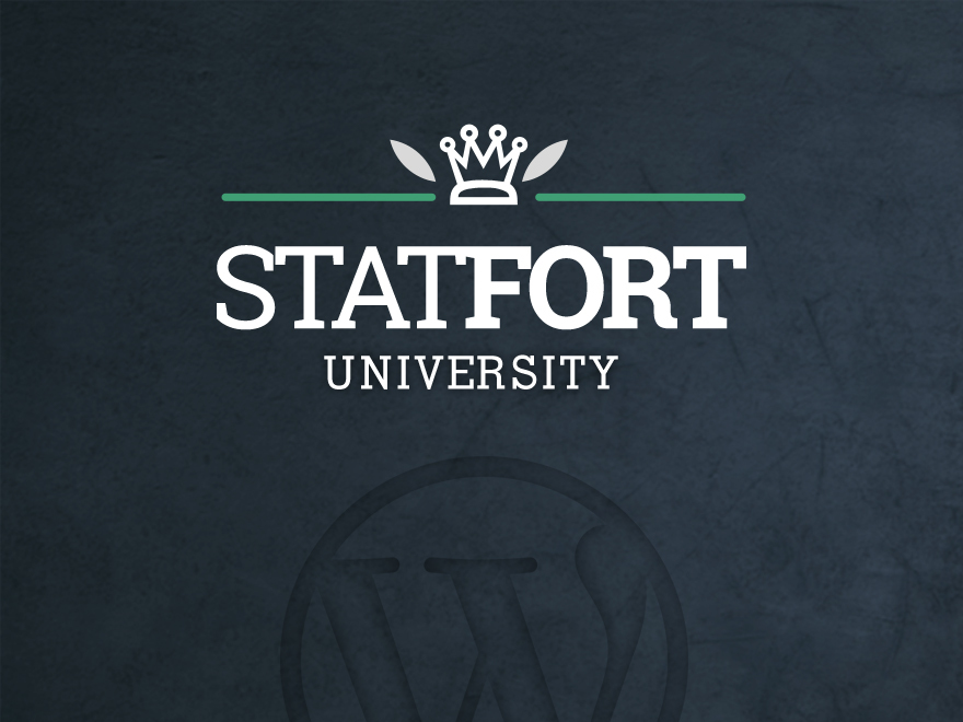 Stat Fort WordPress theme image