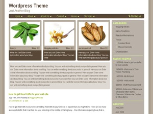 Theme WordPress ReciPress
