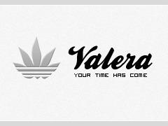 VALERA THEME WP theme