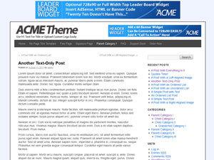 WordPress template Acme Theme
