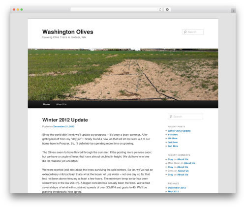 WordPress website template Twenty Eleven - washingtonolives.com