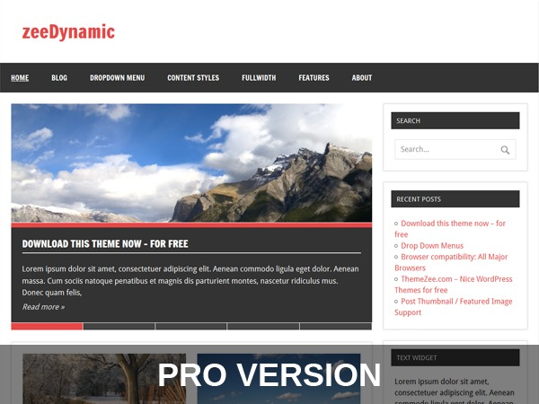 zeeDynamicPro WordPress theme