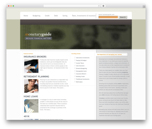WordPress theme InterPhase - monetaryguide.com