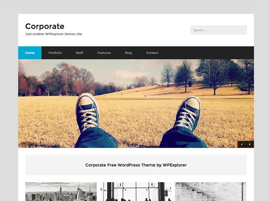 WordPress website template Corporate Child