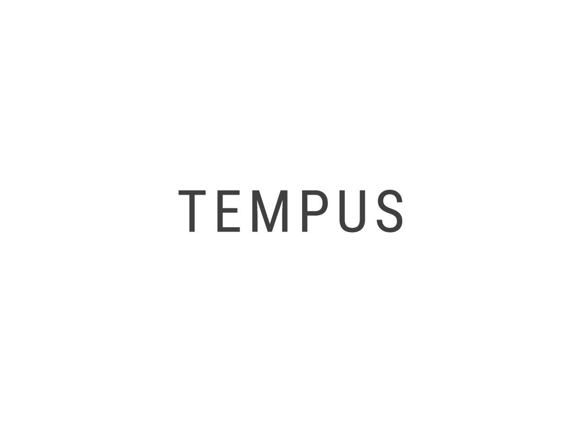Tempus best WordPress gallery