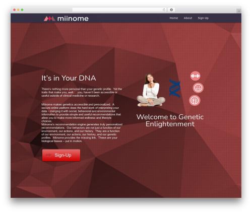 WordPress website template Encore - miinome.com