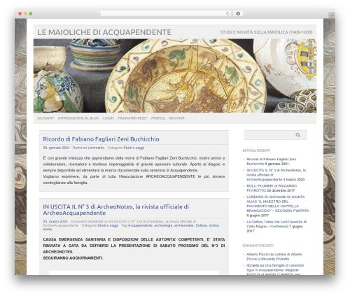 Best WordPress theme picolight - maiolica.info