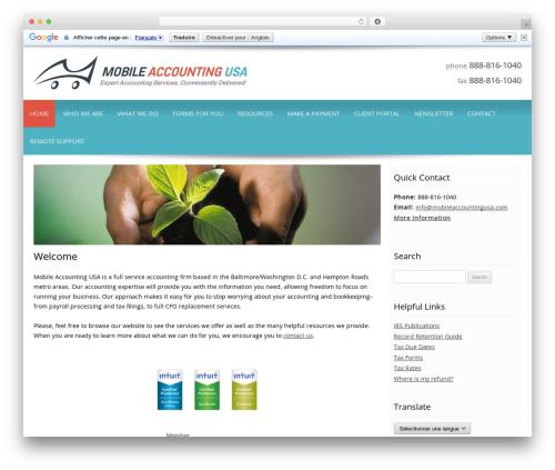 Customized best WordPress template - mobileaccountingusa.com