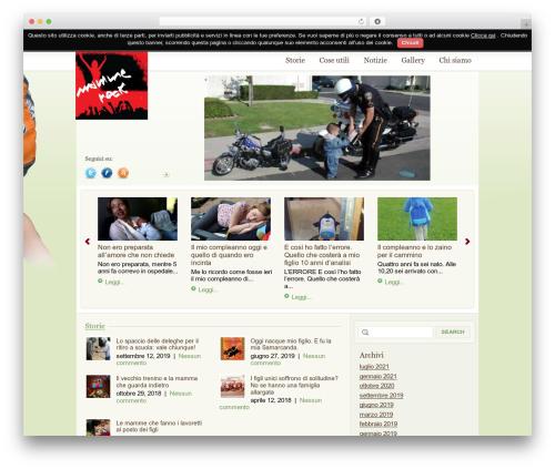 WordPress Theme 1269 best WordPress template - mammerock.net