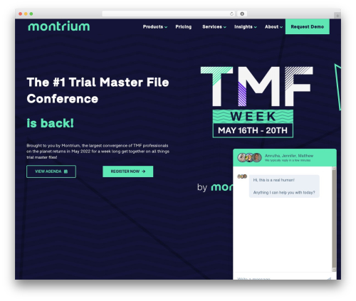WordPress theme Avada - montrium.com