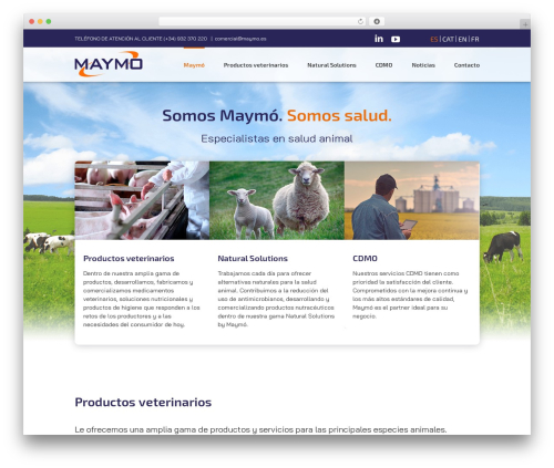 Best WordPress theme Avada - maymo.es