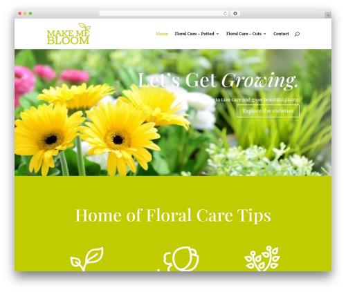 Theme WordPress Divi - makemebloom.com
