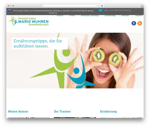 Baylys gym WordPress theme - mm-fit.de