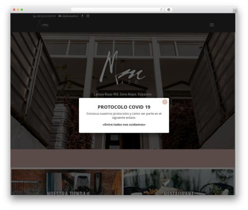 Divi WordPress theme design - mm450.cl