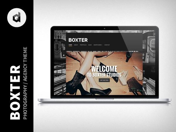 WordPress template Boxter Child