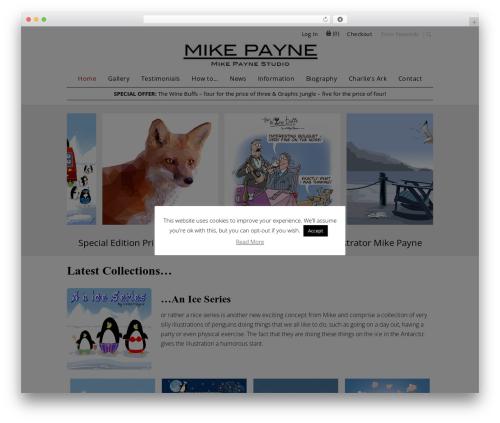 WordPress wpcopyprotectionsu plugin - mikepaynestudio.com