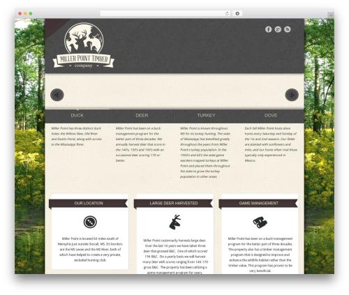 Special best WordPress template - millerpoint.net