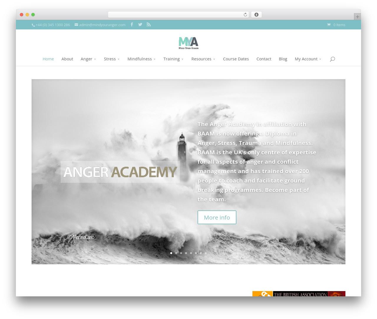 WordPress theme Divi - mindyouranger.com