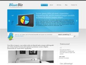 Biz Template3 WordPress template for business