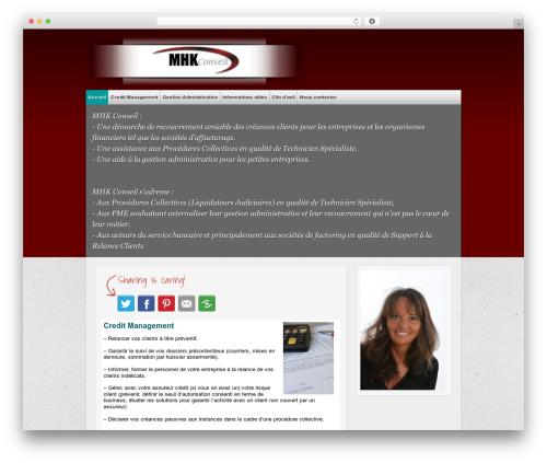 multi-color premium WordPress theme - mhkconseil.fr