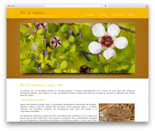 WordPress template Striking - miel-manuka.info