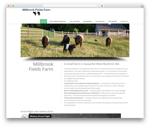 WordPress template Creativo 5.0 - millbrookfields.com