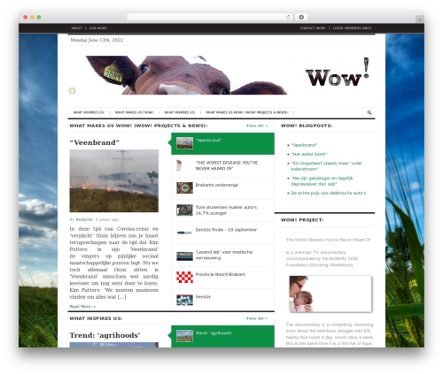 Best WordPress template The Daily Press - wow-site.org