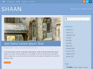 Best WordPress theme Shaan