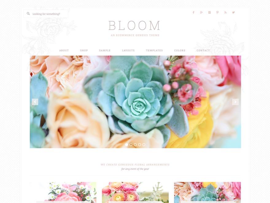 Bloom Theme top WordPress theme