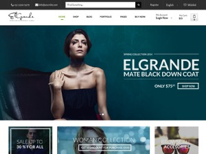 Elgrande WordPress ecommerce theme