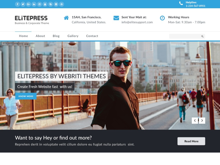 ElitePress theme free download
