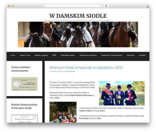 Free WordPress Custom Banners plugin - wdamskimsiodle.pl