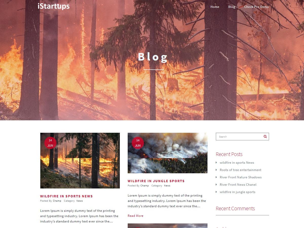 iStartups WordPress news theme
