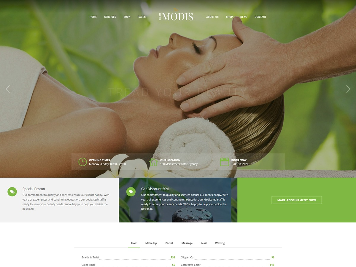 Modis WordPress theme design