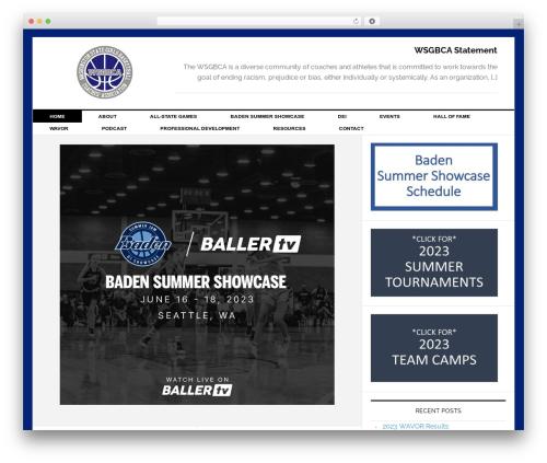 News Pro Theme best WordPress magazine theme - wsgbca.com