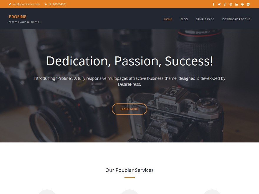 Profine company WordPress theme