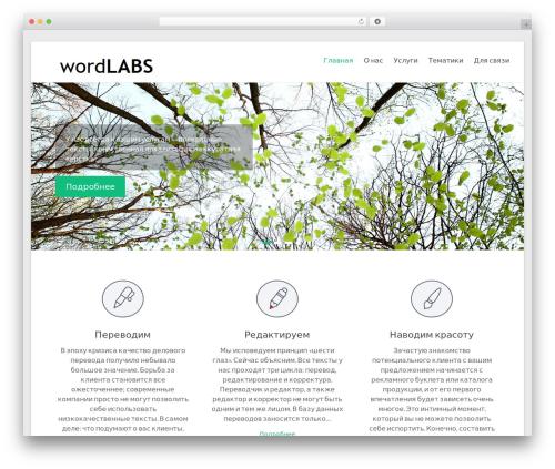 Spacious WordPress website template - wordlabs.ru