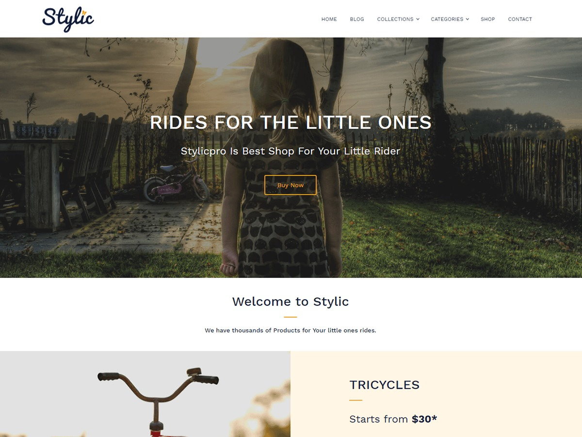 Stylic WordPress ecommerce template